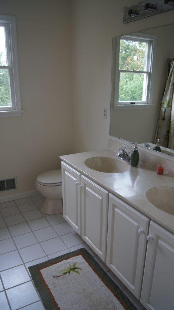Hallway Bathroom before